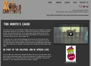Avid Design Group, LLC, St. Augustine website design for charity, charity website designers NE fla, Not for profit website design, not for profit website designers, Twelve World Challenges